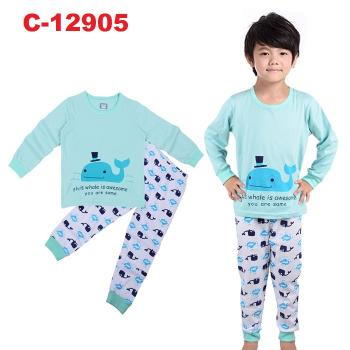 C-12905: Sleepsuit (Long Sleeve+Pant) --  1