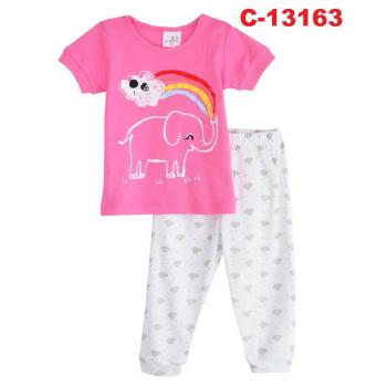 C-13163: Sleepsuit (Long Sleeve+Pant) --   14