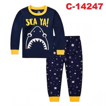 C-14247: Sleepsuit (Long Sleeve+Pant) - 5/1