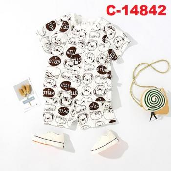C-14842: Infant Casual/Sleepsuit -- 17/1