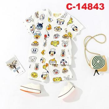 C-14843: Infant Casual/Sleepsuit ( Collar is blue ) --  17/1